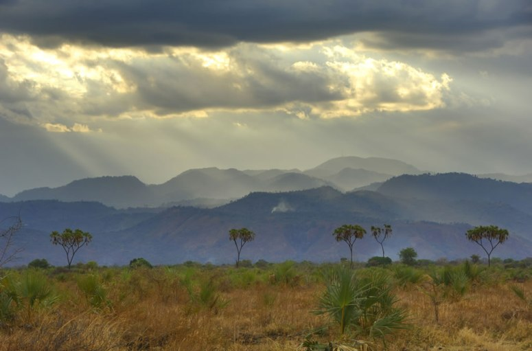 Kenya 14 - Meru Natl Park