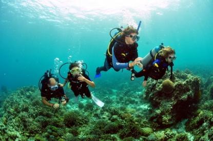 family-diving