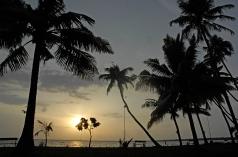 WIYOTravel_Coconut Lagoon, Kumarakom - Sunset1